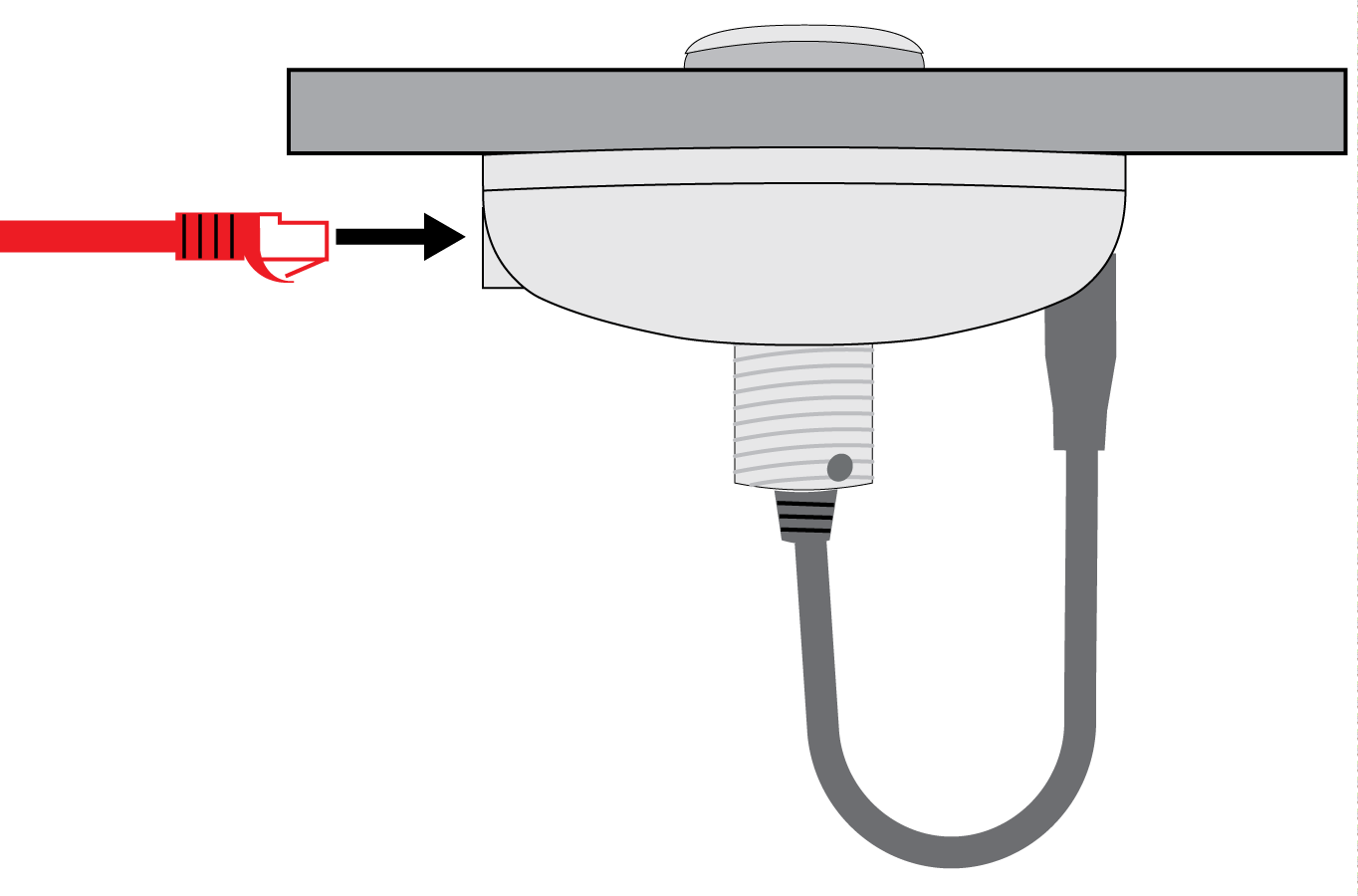 Connect the Ethernet cable to the MXA Network Mute Button to supply power.