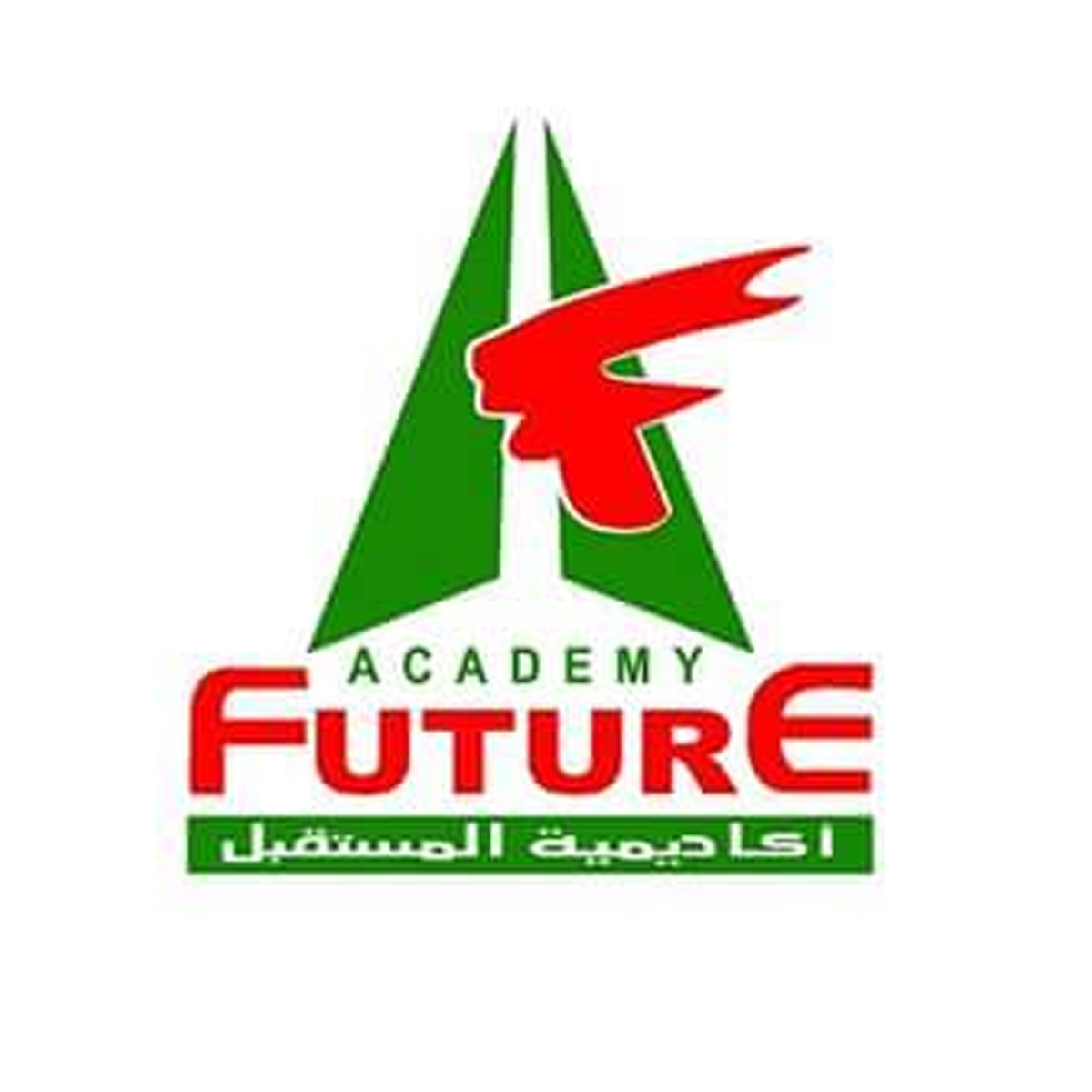 Future Higher Institute for Specialized Technological Studies
