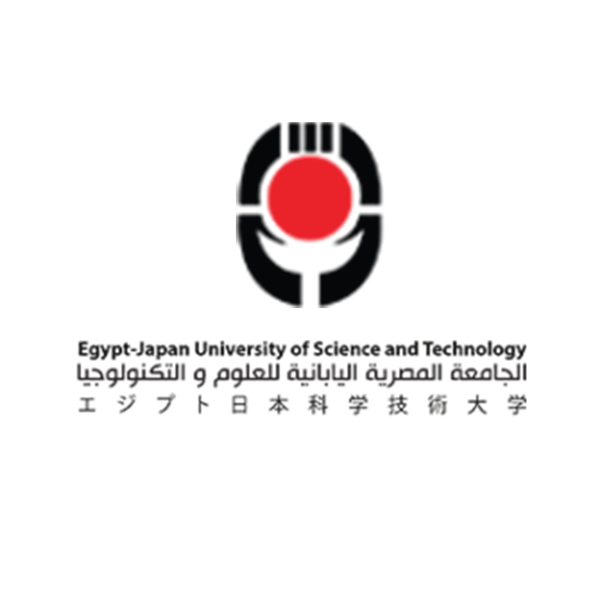 Egypt-Japan University of Science and Technology E-JUST