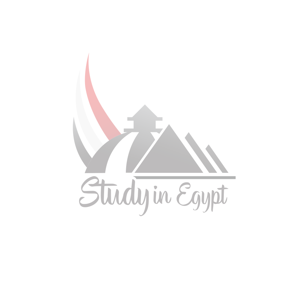Commercial Technical Institute - Aswan
