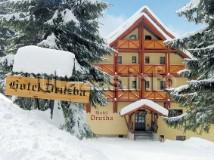 Hotel Ski & Wellness Residence Družba Jasná