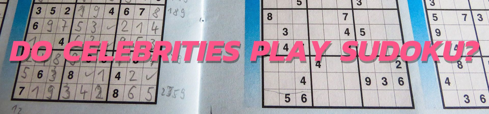 Do Celebrities Play Sudoku INA 2