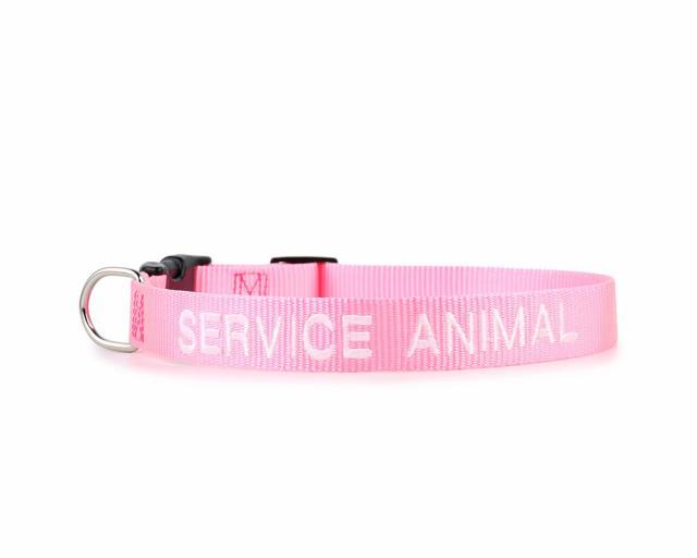 Service Animal Collar