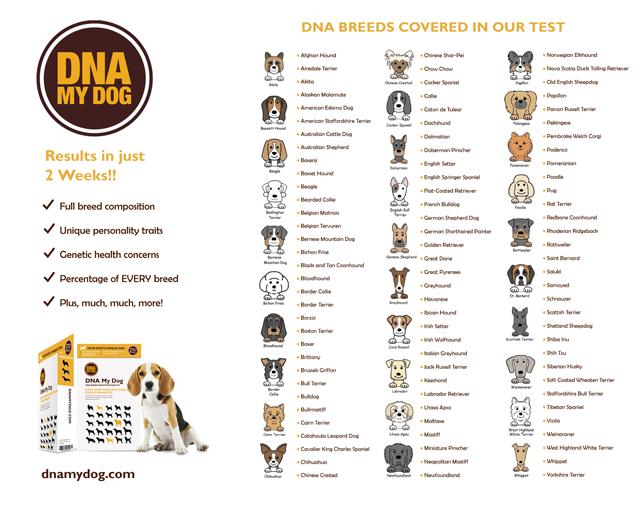 DNA Breed Identification Test Kit