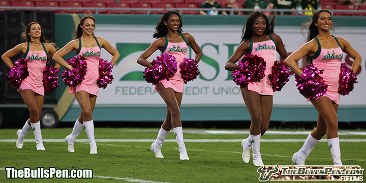 Bulls' Pink Cheerleaders