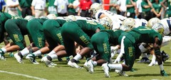 South Florida Bulls vs Georgia Tech 2018 Bulls Gallery  0056.jpg
