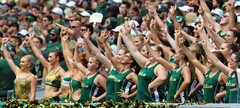 South Florida Bulls vs Georgia Tech 2018 Bulls Gallery  0093.jpg