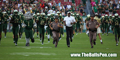 The South Florida Bulls enter Raymond James Stadium