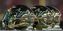 3 Gold Reflecting USF Helmets