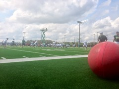 USF South Florida Bulls Season Ticketholder Open Practice 11