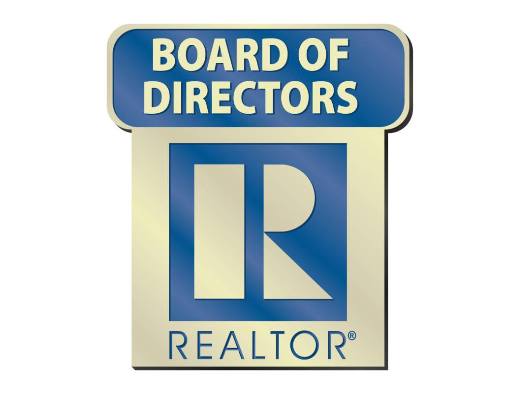 Board of Directors Pin pins, magnetic, realtors, lapels, stick pins, sticks, locals, states, national, directors, boards, executives, board of directors, elected, position, NAR, elections