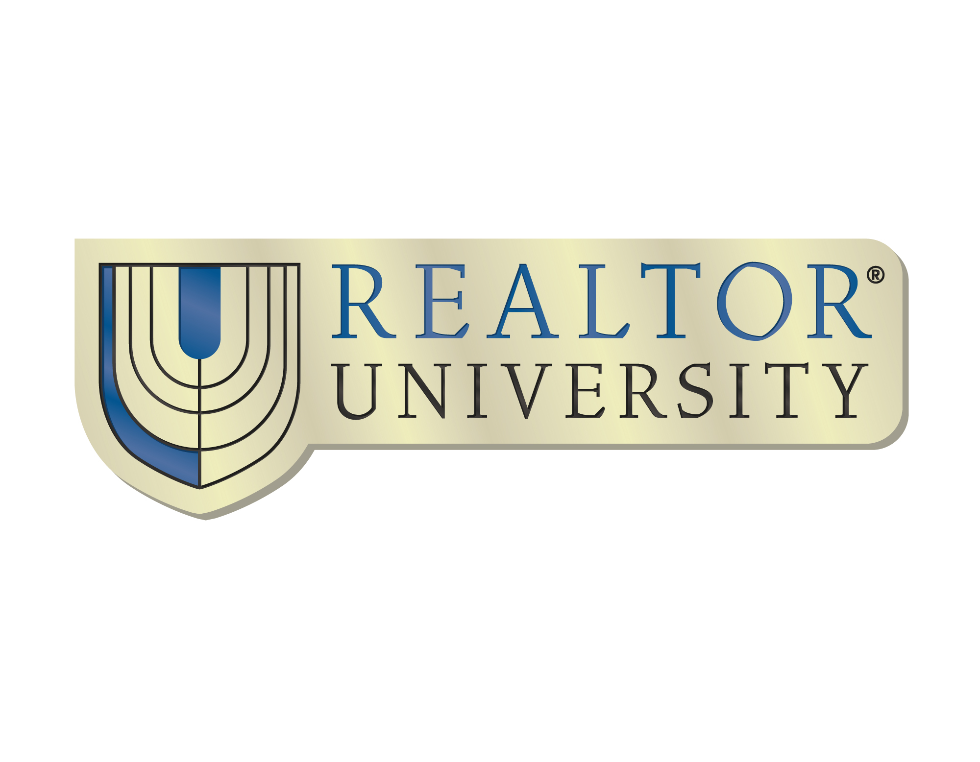 REALTOR University Lapel Pin