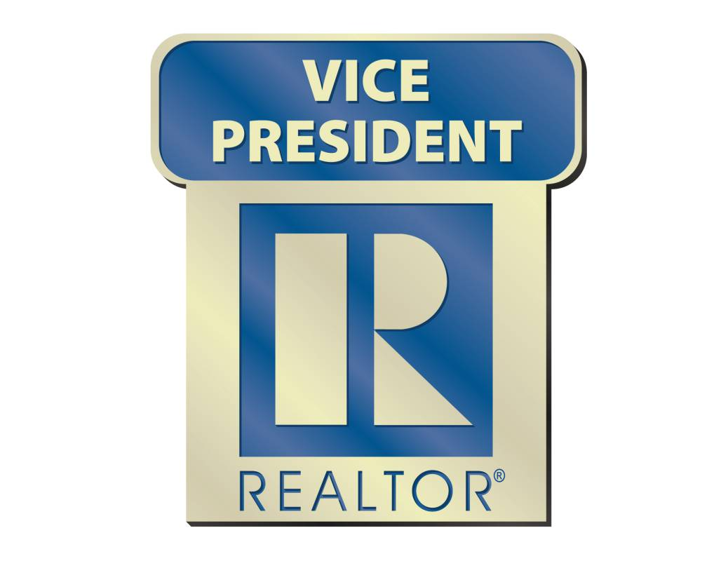Vice President Pin pins, magnetic, realtors, lapels, stick pins, sticks, vice presidents, boards, states, vice, presidents, VP