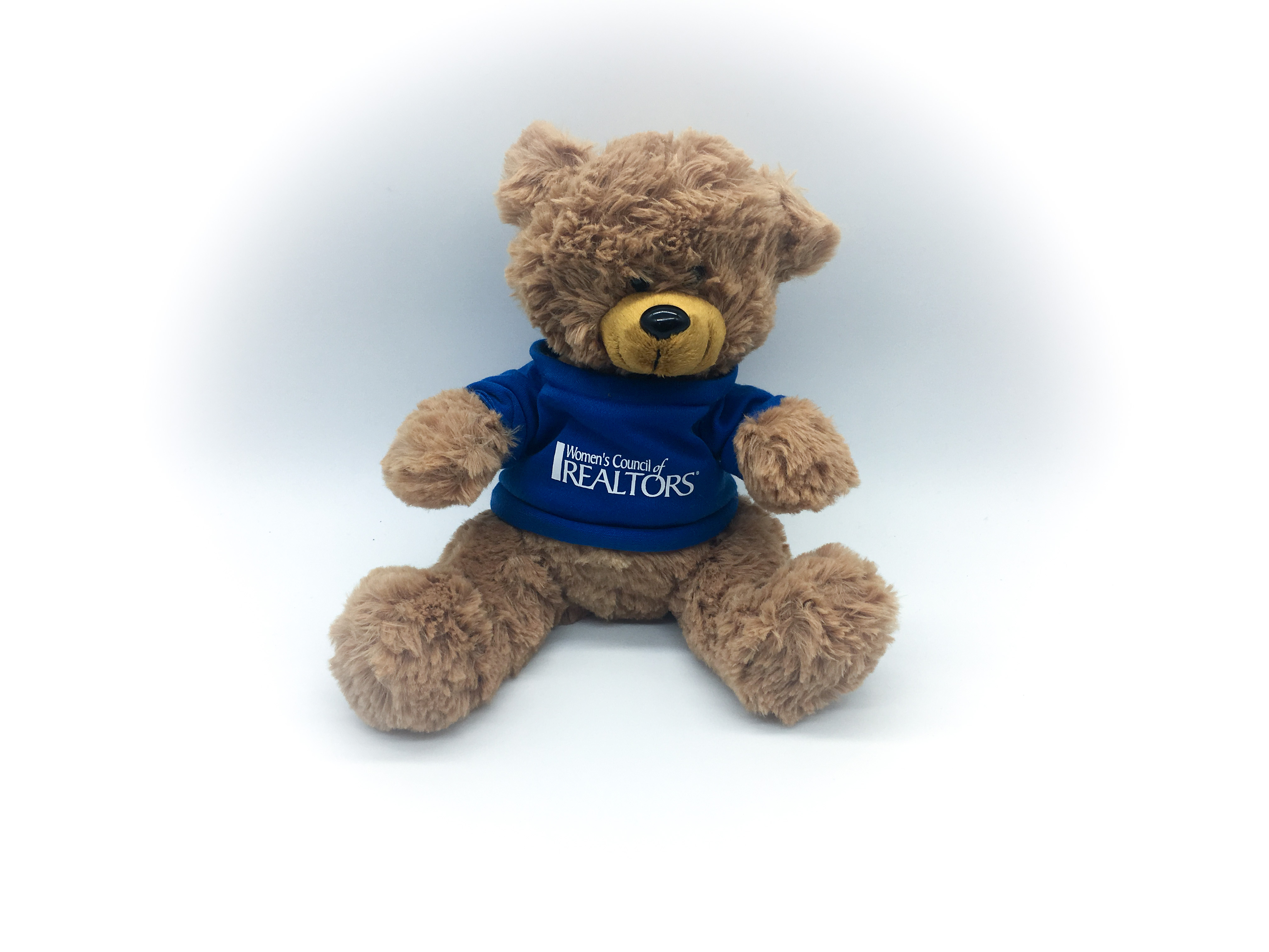 WCR Sitting Plush Bear - WCR4663