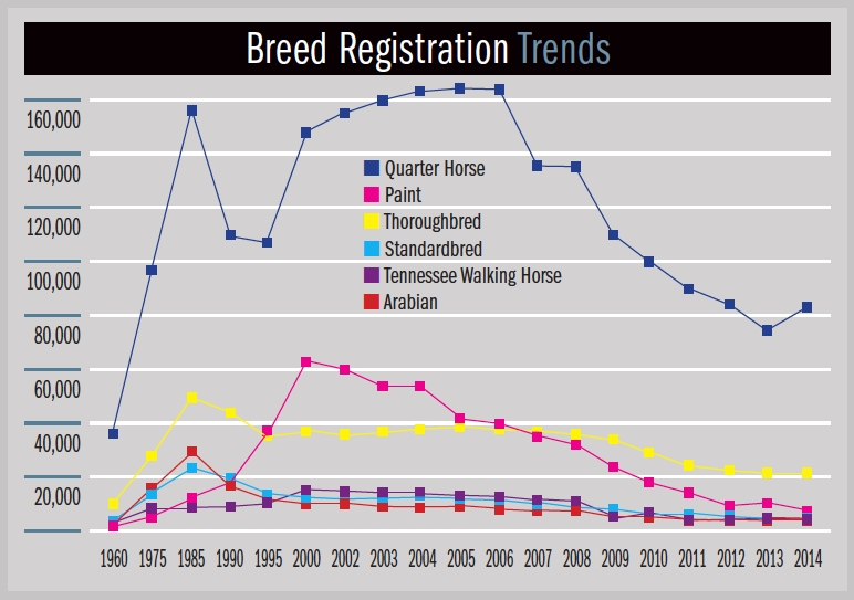 The Ups and Downs of U S  Horse Registrations – The Horse