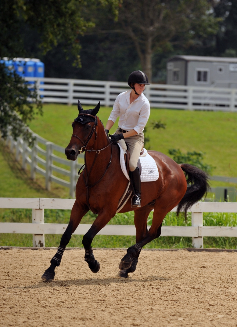 4 Exercises To Increase Rider Fitness And Horse Comfort The Horse