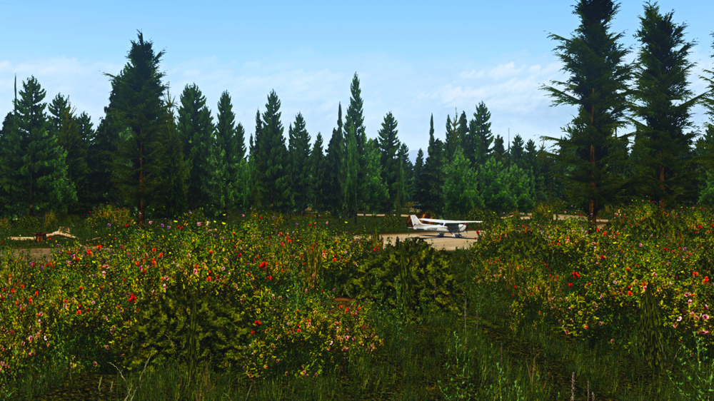 X-Plane Screenshot 2018.07.07 - 20.41.28.87.png