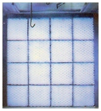 PP-020-020-030 PAINT POCKET 20X20 PADS 30/CASE 2020PAFIF