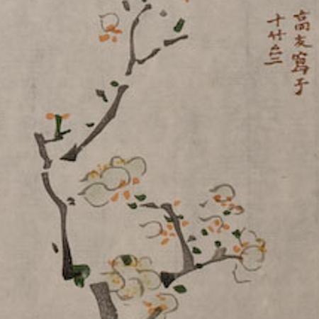 Cheng-Yen