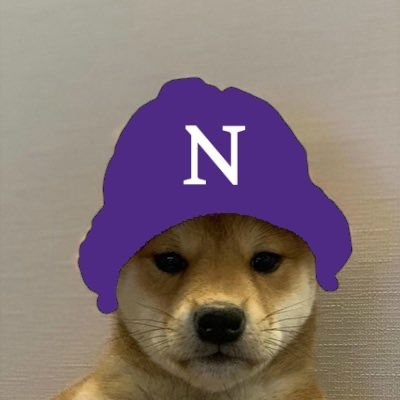 Northwestern Wildcats Esports's logo