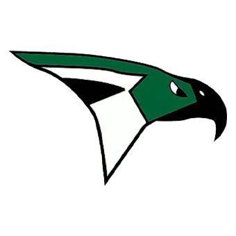 AMHS Raptorss's logo