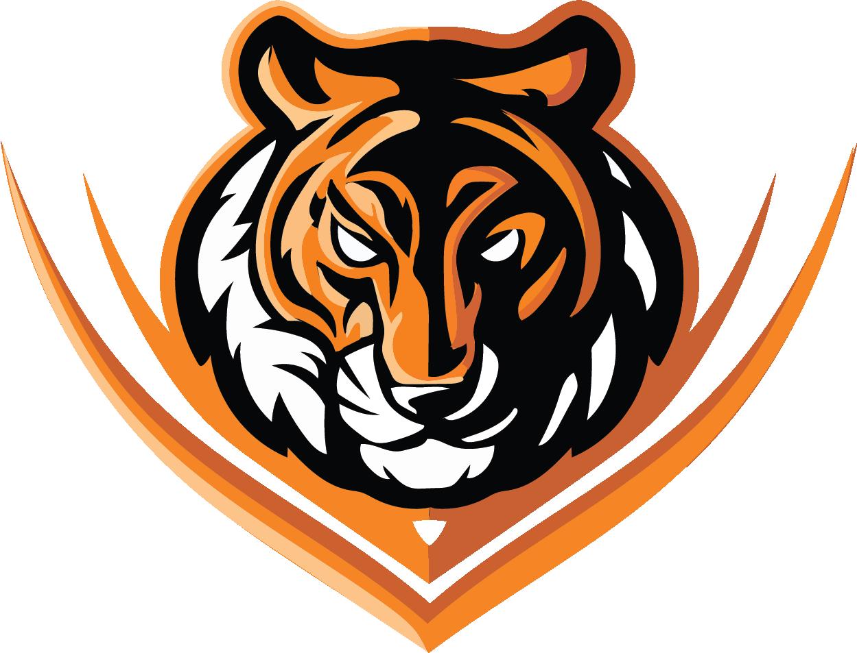 Barnegat Rocket League Orange's logo