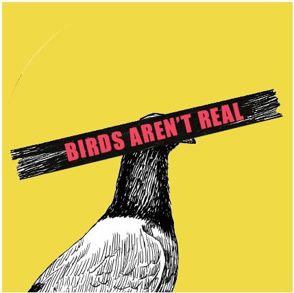 Birds Aren't Real's logo