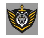 DUSK Combat Force's logo