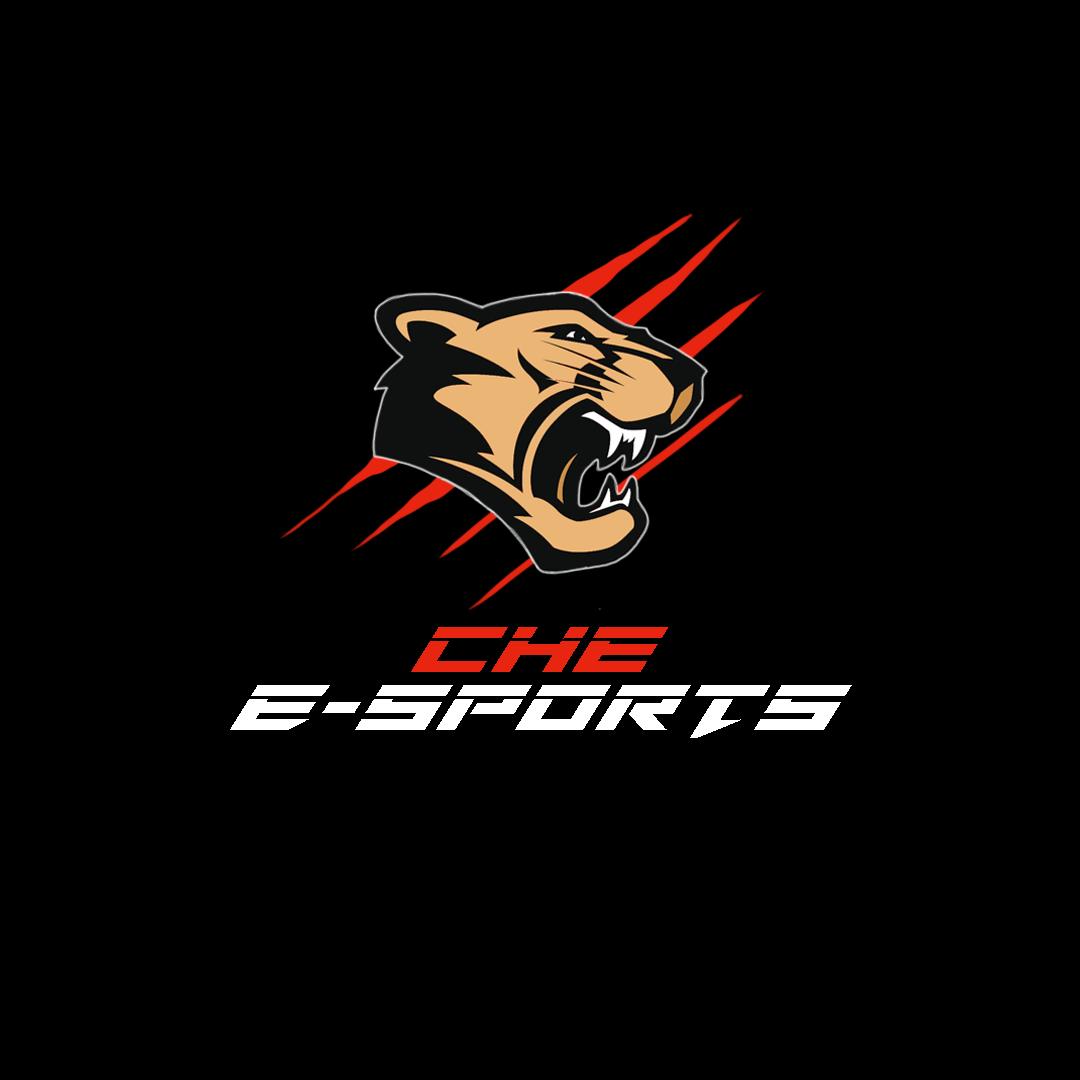 East Overwatch Team's logo