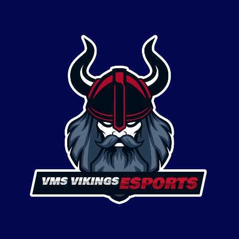 Voorhees Vikings's logo