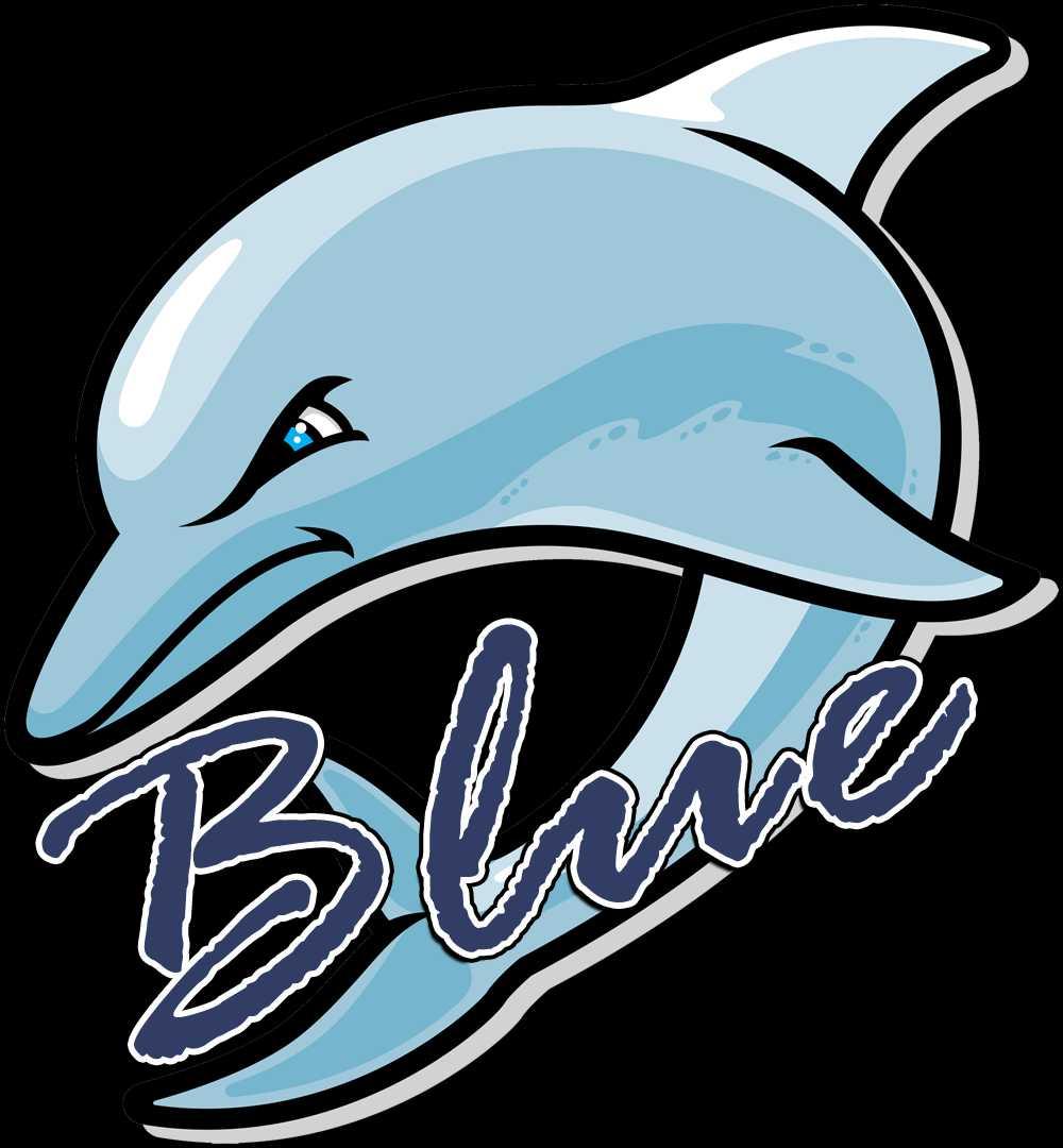 Bayshore Dolphins Blue's logo