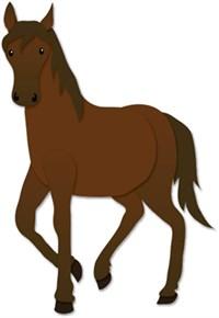 Horse 260X377