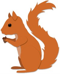 Squirrel 250X238