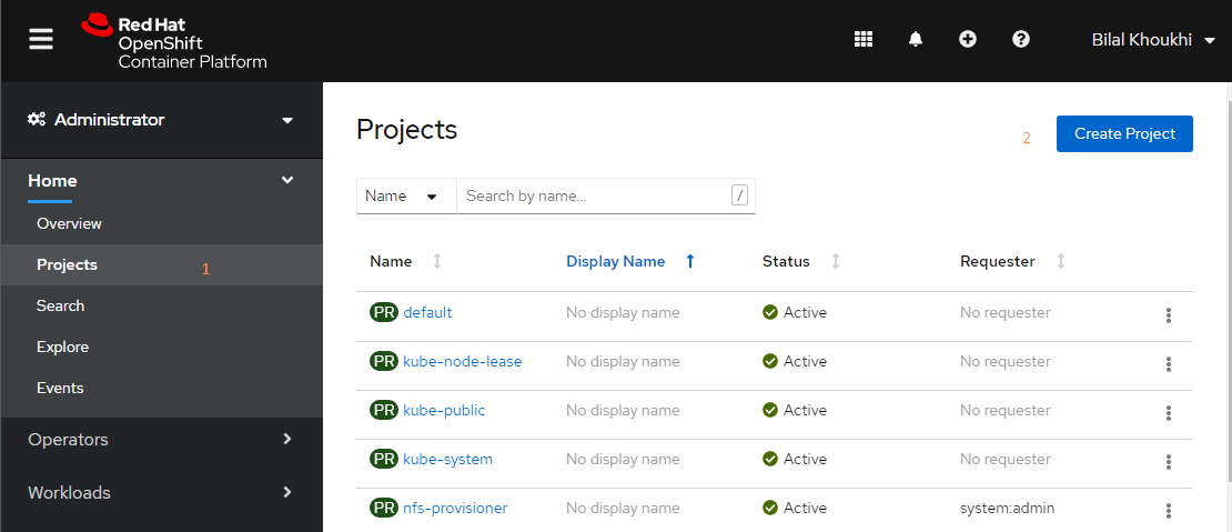 OpenShift Web Console, how to create a new project