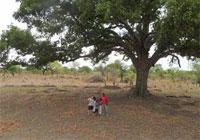 Kuj Family Adoption and Land!