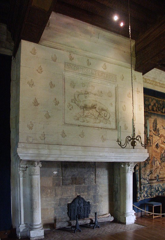 ch teau d azay le rideau french 325. Black Bedroom Furniture Sets. Home Design Ideas