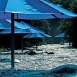 The Umbrellas in Japan