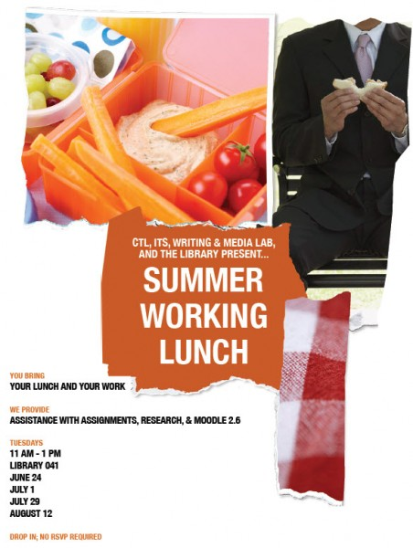 Summer Working Lunch July   Furman Library News  Furman University  Research Resources Research Services  Tagged With Center For Academic  Success Home Page Information Technology Services Writing  Media Lab