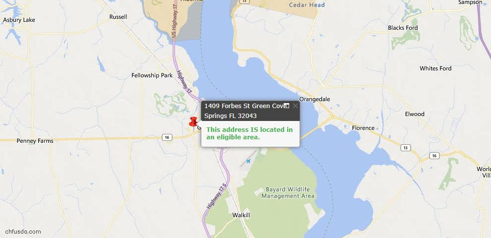 USDA Loan Eligiblity Map - 1409 Forbes St, Green Cove Spr, FL 32043