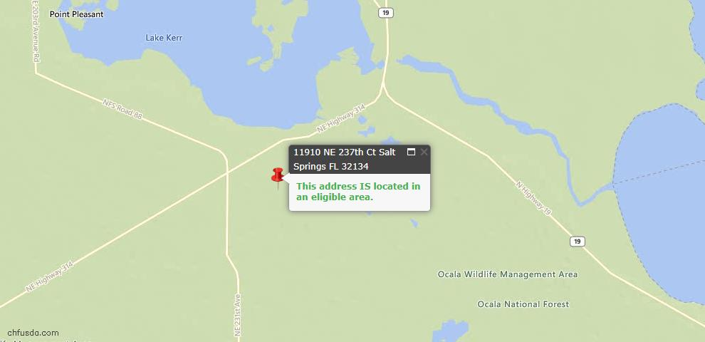 USDA Loan Eligiblity Maps From - Salt Springs, FL