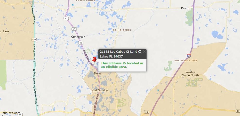 USDA Loan Eligiblity Map - 21133 Los Cabos Ct, Land O Lakes, FL 34637