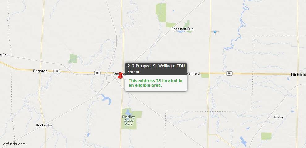 USDA Loan Eligiblity Map - 217 Prospect St, Wellington, OH 44090