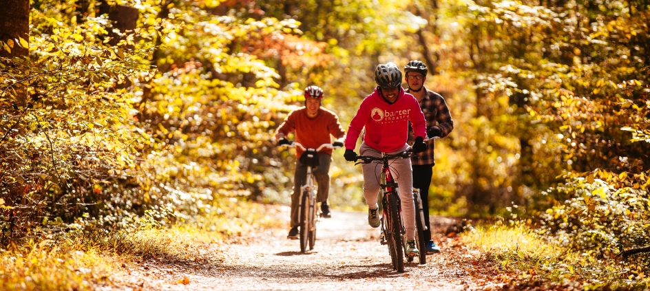 The Virginia Creeper Trail in the fall