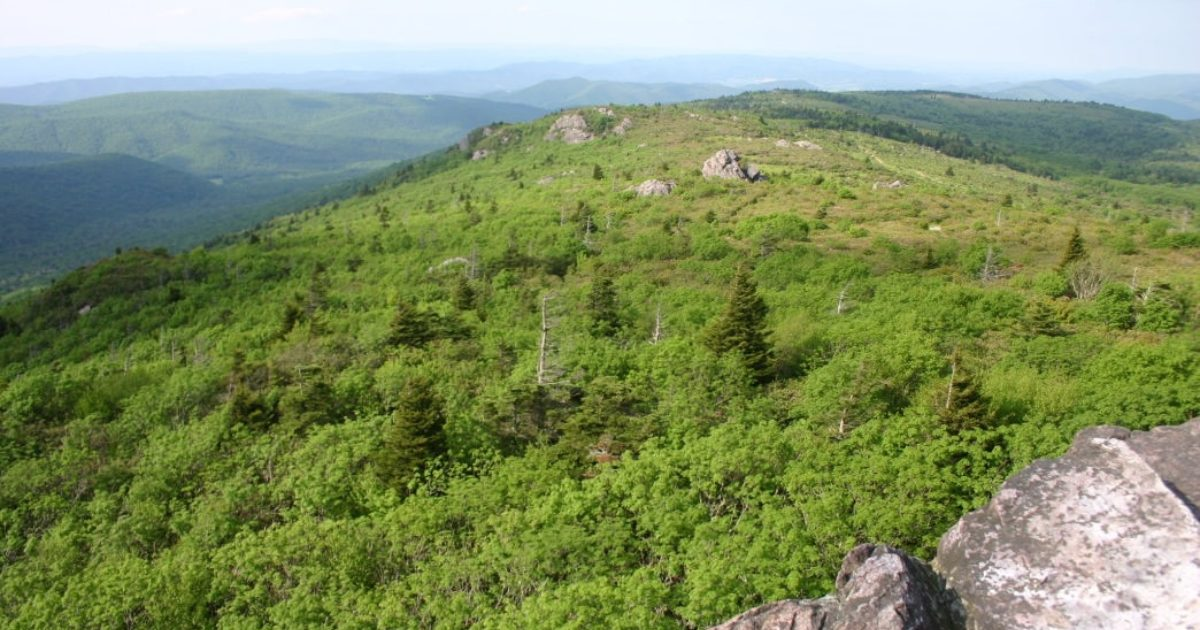 Abingdon Virginia | Hiking to Mount Rogers: The Best Day Hike in…