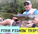 Fork Fishin Trips