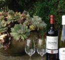 Katbird's wine