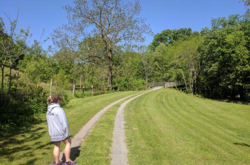 Creeper Trail Alvarado 015