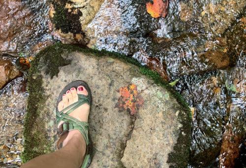 Chacos at Gentry Falls