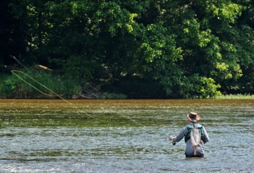 Abingdon Virginia | An Overview of the Fly Fishing Scene in Southwest…