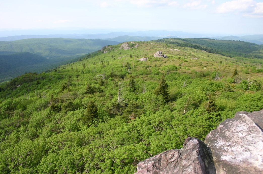 20170119 mount-roger-s-hike